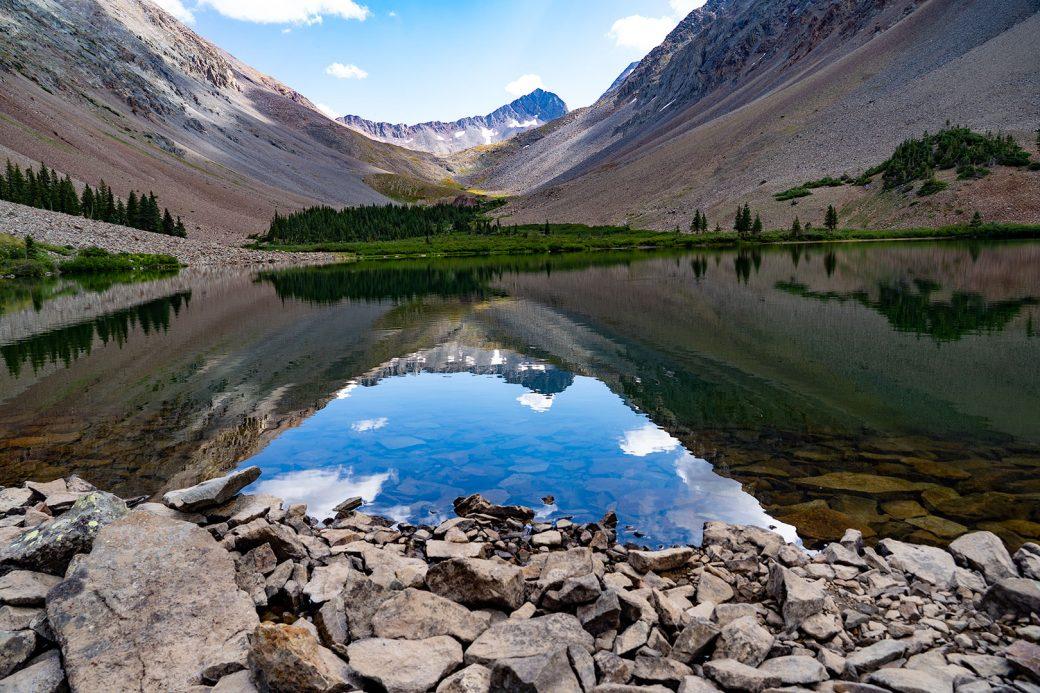 Colorado wildflowers - Copyright Debbie Devereaux Photography